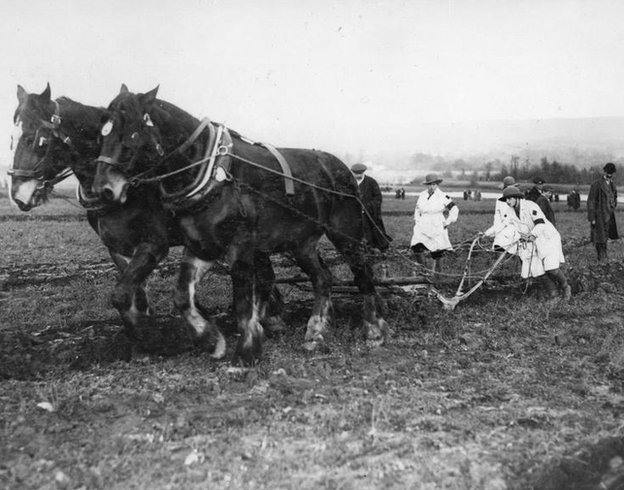Women's land army workers ploughing a field