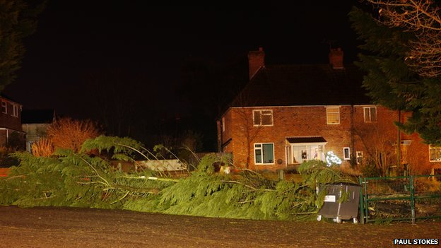 Tree down in Royal Wootton Bassett, Wiltshire