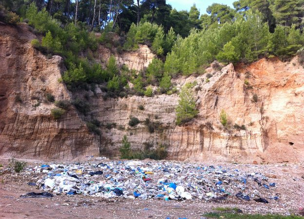 Rubbish in a Greek pine forest