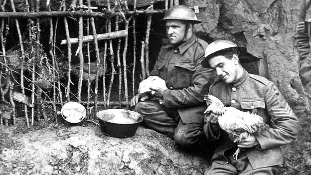 Conscription In The First World War  WW1 Facts