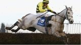 Silver By Nature in action in the 2009 Welsh Grand National