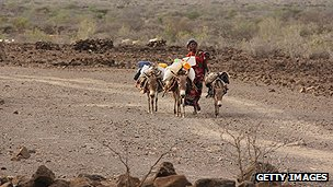 Woman on way to collect water