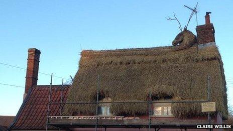 Thatch roof reindeer