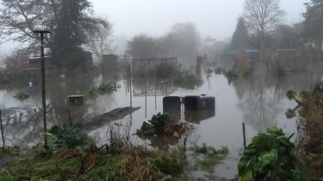 Flooded allotments in Godalming