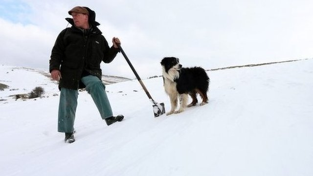 Farmer and dog in snow