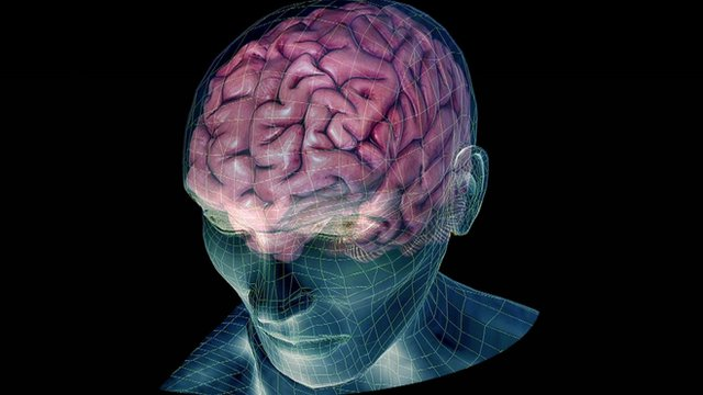 Imaging of the human brain