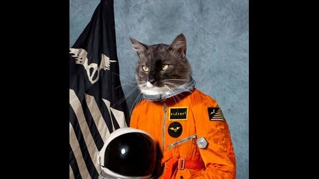 Surfing the Void by The Klaxons