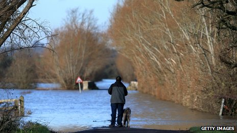 A man and his dog stand looking at flood water on a road