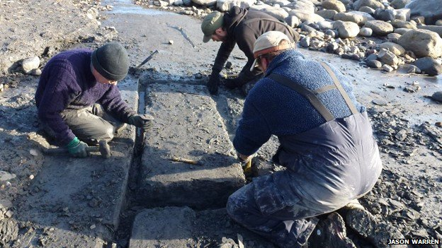 Fossil experts working on  ichthyosaur skeleton
