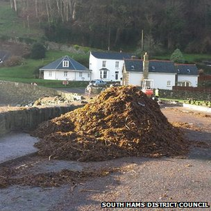 Car park seaweed. Pic: South Hams District Council