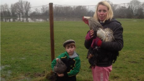 Six-year-old Toby Sadler and his mother Bryony moving their chickens on the Somerset Levels