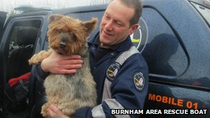 Elvis the Yorkshire Terrier dog was also rescued from the property