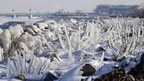 Ice covers rocks and brush on the break wall at Edgewater Park in Cleveland