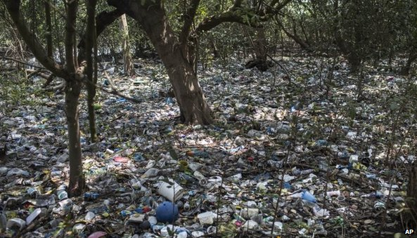 Rubbish litters a forested area on the shores of Guanabara Bay
