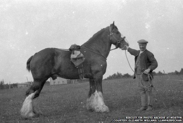Biscuit Tin Photo Archive at MOSTYN Courtesy Elizabeth Willams, Llanfairfechan