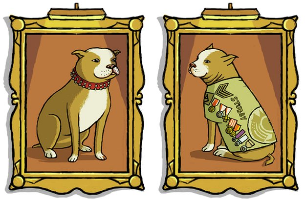 Sergeant Stubby illustration