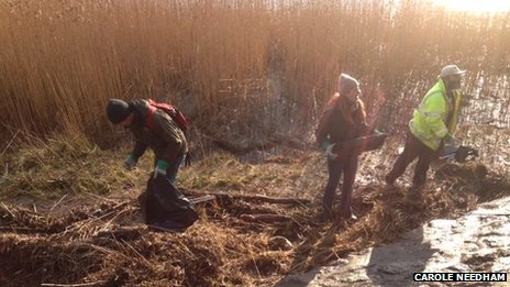Clean up on Humber Foreshore