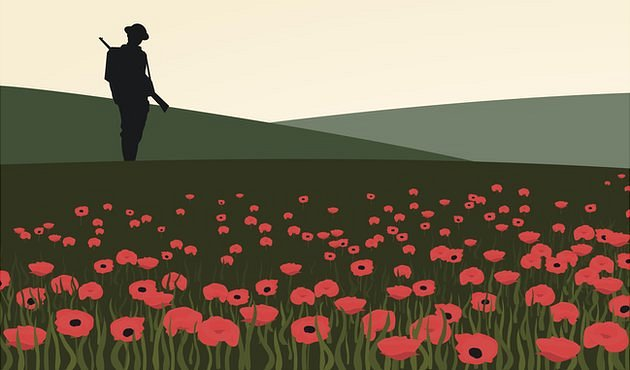 Bbc Schools Remembrance And Poppies