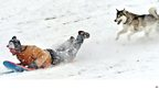 A man and his dog sliding down a snow covered hill