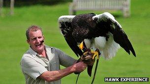 Chris O'Donnell with Nikita the sea eagle