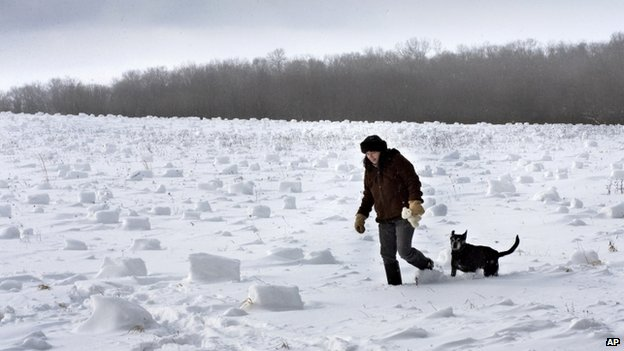 A woman and her dog walked through a field filled with snow rollers near Oil City, Pennsylvania, on 27 January 2014