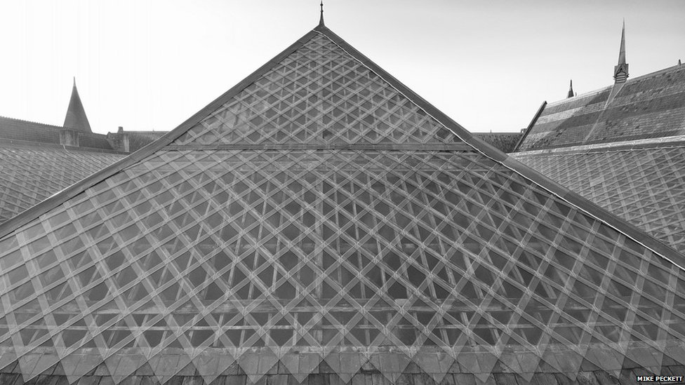 Oxford's Museum of Natural History roof