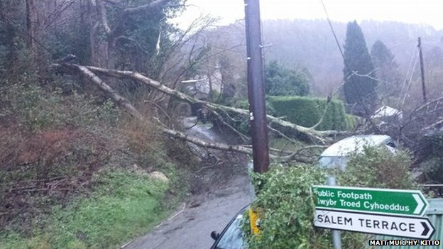 Trees brought down power lines in Gwaelod-y-Garth near Cardiff