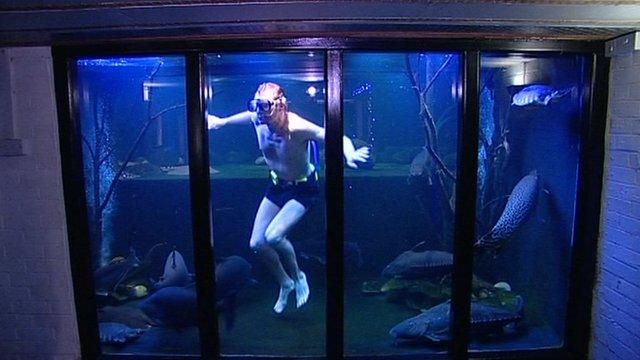 Nottingham giant aquarium man to sell fish - BBC News