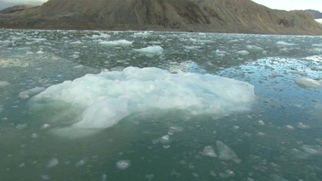 lump of floating ice