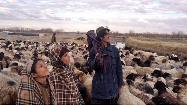 Kuchis in Helmand