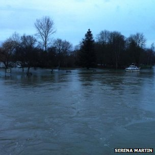 Submerged meadow in Abingdon. Photo: Serena Martin