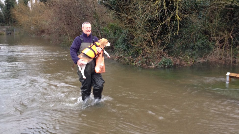 Man carrying his dog through a flooded street