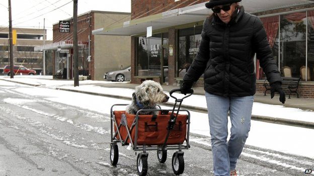 A woman pulled her dog through the snow in Cullman, Alabama on 11 February 2014