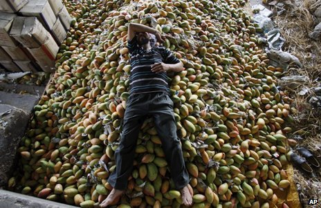 A man is resting on a large pile of mangoes