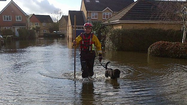 A rescue team member from Specialist Group International walks a dog through the flood water