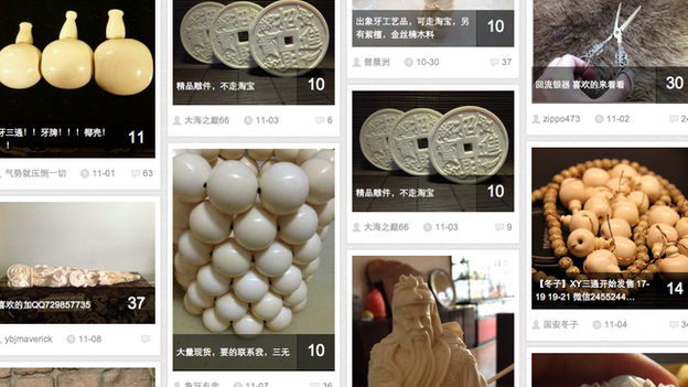 "A screengrab from website Baidu forum showing search engine results for the term ""African ivory"""
