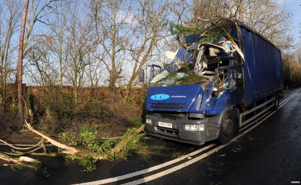 A lorry driver was lucky to avoid serious injury after colliding with a fallen tree during high winds on the A39 near Bridgwater