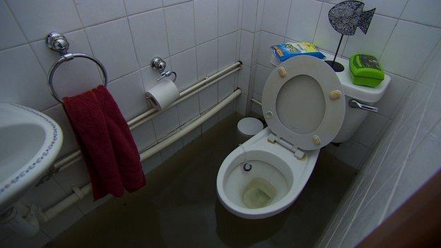 Ham's toilet