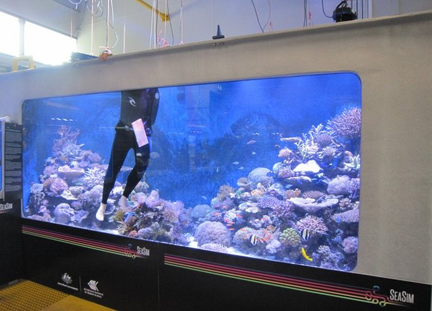 Tank at SEASIM