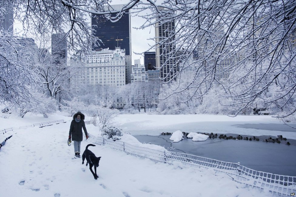 A woman and her dog go for a walk in Central Park in New York City on 14 February 2014