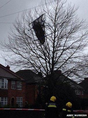 A trampoline stuck in a tree in Yeovil
