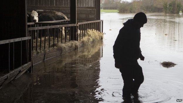 A Somerset farmer