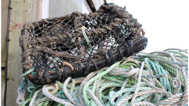 Damaged lobster pot