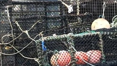 Fishing nets and cages