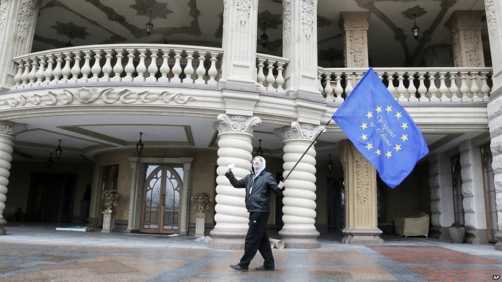Protester waves an EU flag in the presidential residence north of Kiev (22 Feb 2014)