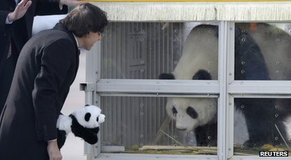 Belgium's Prime Minister Elio Di Rupo says hello to Hao Hao, one of the pandas that arrived from China