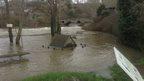 Water levels rising in Cenarth, Carmarthenshire