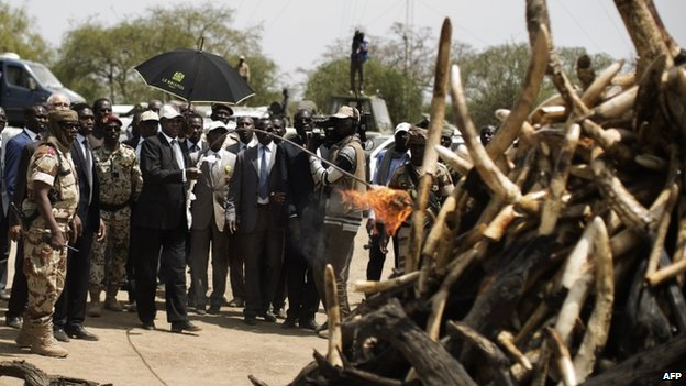 Chadian President Idriss Deby lights a pyre on which elephant tusks were incinerated at Zakouma National Park, Chad - 21 February 2014