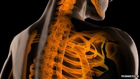 Neck and back X-ray