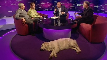 Alan Johnson, Michael Portillo, Andrew Neil and Stewart Lee with Molly the dog